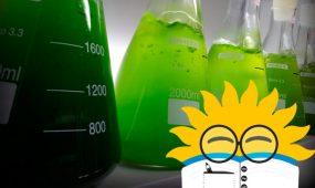Curso en Verano de Ciencias - Biotecnología - Universidad Santo Tomás